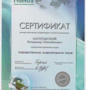 Матковский Владимир Михайлович foto-sertifikata-matkovskogo-vladimira-003